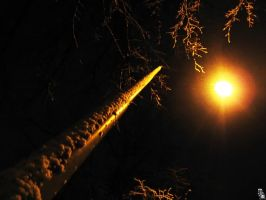 Dark snowy street lamp by wellgraphic