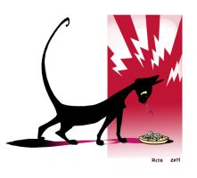 Vio not eating rice by ritam