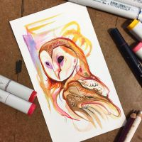 312- Fall Owl by Lucky978