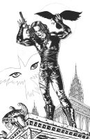 The CROW Inks by RudyVasquez