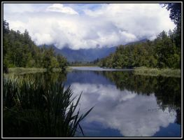 reflections in the water by Macomona