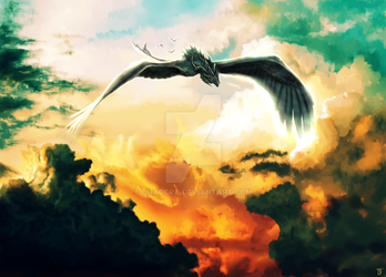 Draco corax by Chaccra