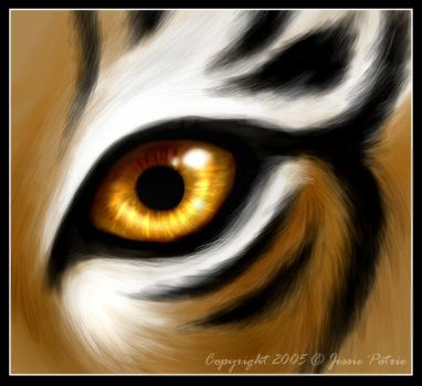 Tiger Eyes by jessielynn85