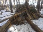Mendon Ponds by Android-shooter