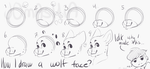 How I draw a wolf face? by P4LE