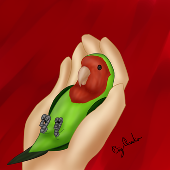 Lovebird by BigClaudia