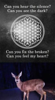 Bmth Deer by lalalalakellinisepic
