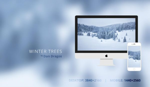 Winter Trees Wallpaper by dandragos