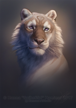 Experimental Portrait Commission - Xetsa @ FA by HannasArtStudio