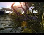 scenery - one afternoon by tigaer