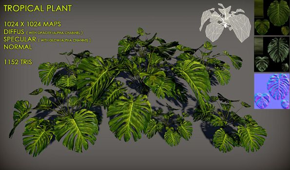 Free Tropical plant Pack by Yughues