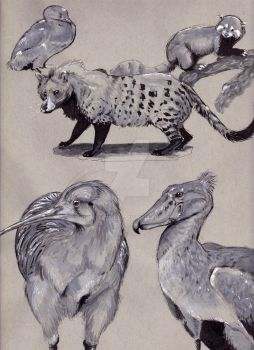 Nhm Sketch Collection by Gentlebree