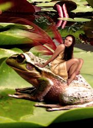 The Frog and The Fairy by butterflypatterns