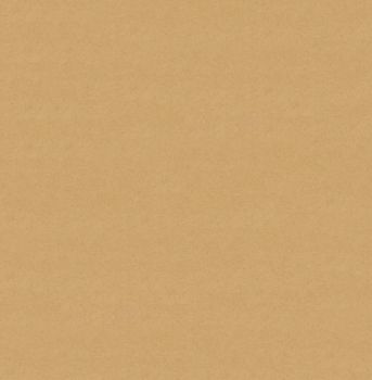 Toned Paper Texture - Free to use by DelusionalPuffball