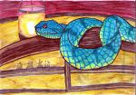 Temple Viper by MountainLygon