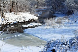Still Flowing in Winter by Celem