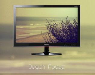 Beach Focus by MGWallpaper