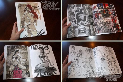 Shades of GRAY sketchbook by J-Scott-Campbell