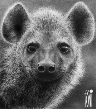 the adorable Hyena by toniart57