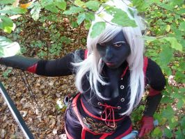 DROW by Chaosvin