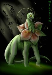 Meganium by Rodentruler