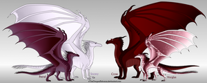 Petrel and Verglas Family Reference by xTheDragonRebornx