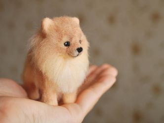 Needle felted Pomeranian by trinnytoy