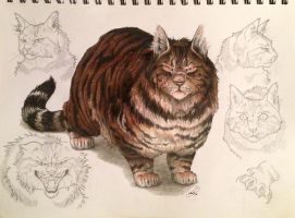 Warrior Cats -- Tigerstar by SoooThisIsArt----Wow