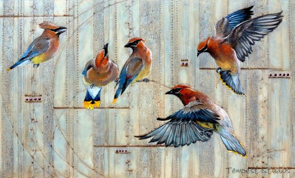 Waxwing Rhapsody by TempestErika