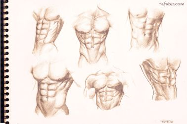 Male torso study for the six pack lovers by rafater