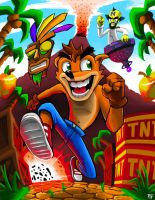 Crash Bandicoot by combobomb