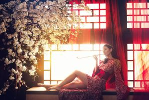 in the mood for love 2 by robinpika