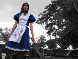 Alice Madness Return by An0therSide