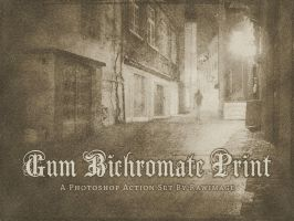 Gum Bichromate Print by rawimage