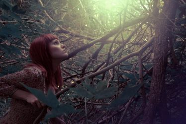 Lost in Forest by Mnemossa
