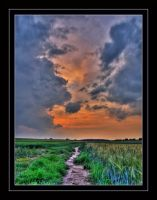 Path into Sunrise - HDR by SteOS