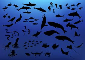 71 Fish And Sea Creature Silhouettes by superawesomevectors