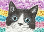 black and white cat face watercolor aceo painting by tulipteardrops