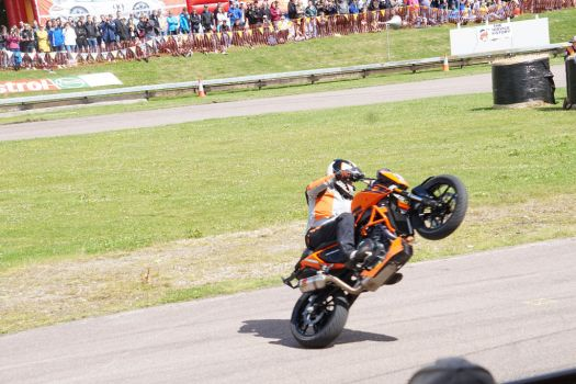 wheely good show by Rossco19