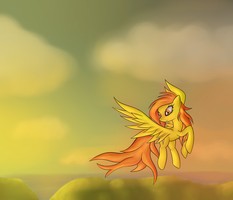 Sunset Flight by SerenaKKS