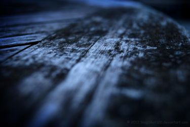 Wood by SnapShot120