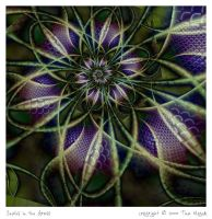 Snakes In The Grass by aartika-fractal-art