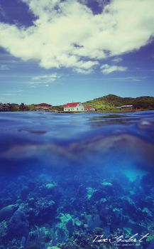 Island Congregation by IsacGoulart