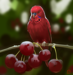 cherry parrot by GaudiBuendia