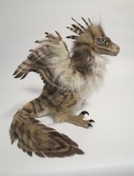 feather raptor chick by kimrhodes
