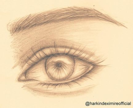 Realistic Eye Attempt by HarkinDeximire
