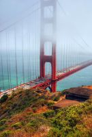 Golden Gate II by simple-squamous
