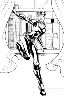 Catwoman Lines by DStPierre