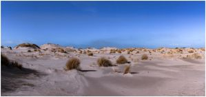 dunes under construction by corniger-aries