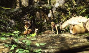 A visit to the wilderness! by Edheldil3D